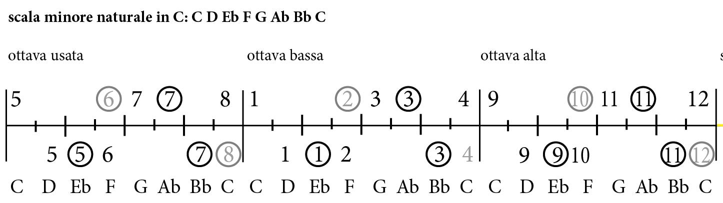 monkey on a limb - minore - tablatura scale